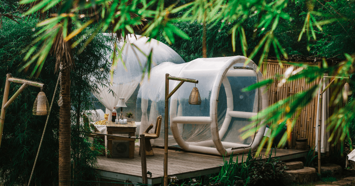 Bubble Tent in the woods